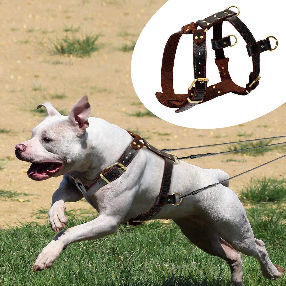 FidgetGear Real Genuine Leather Dog Harnesses Soft Heavy Duty Dog Vest for Pitbull Boxer