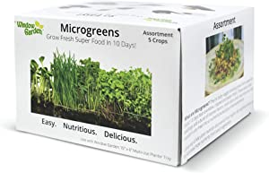 """Window Garden Microgreen Assortment 5 Pack Refill – Use with Grow n Serve Kit, Multi-Use 15"""" x 6"""" Planter Tray, Pre-Measured Soil + Seed, Zesty Radish, Sunflowers, Pea Shoots, Wheat Grass and Salad."""