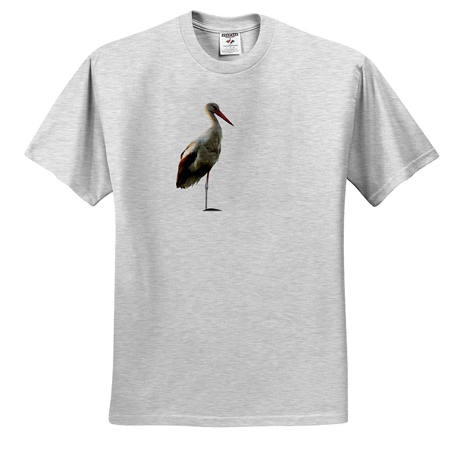Acrylic Art Adult T-Shirt XL White Stork Ciconia ciconia 3dRose Taiche White Stork Painting ts/_317482