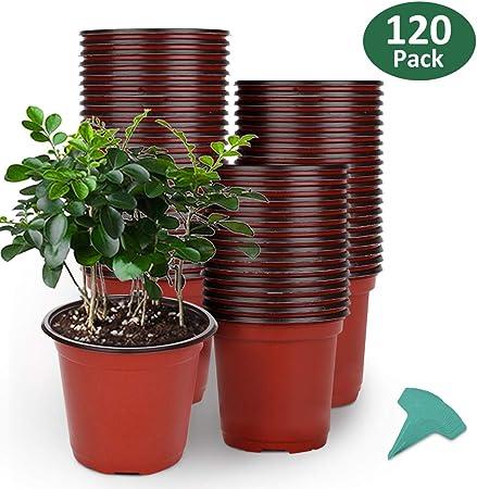 6 Inches Plastic Plant Nursery Pots with 15 Pcs Plant Labels