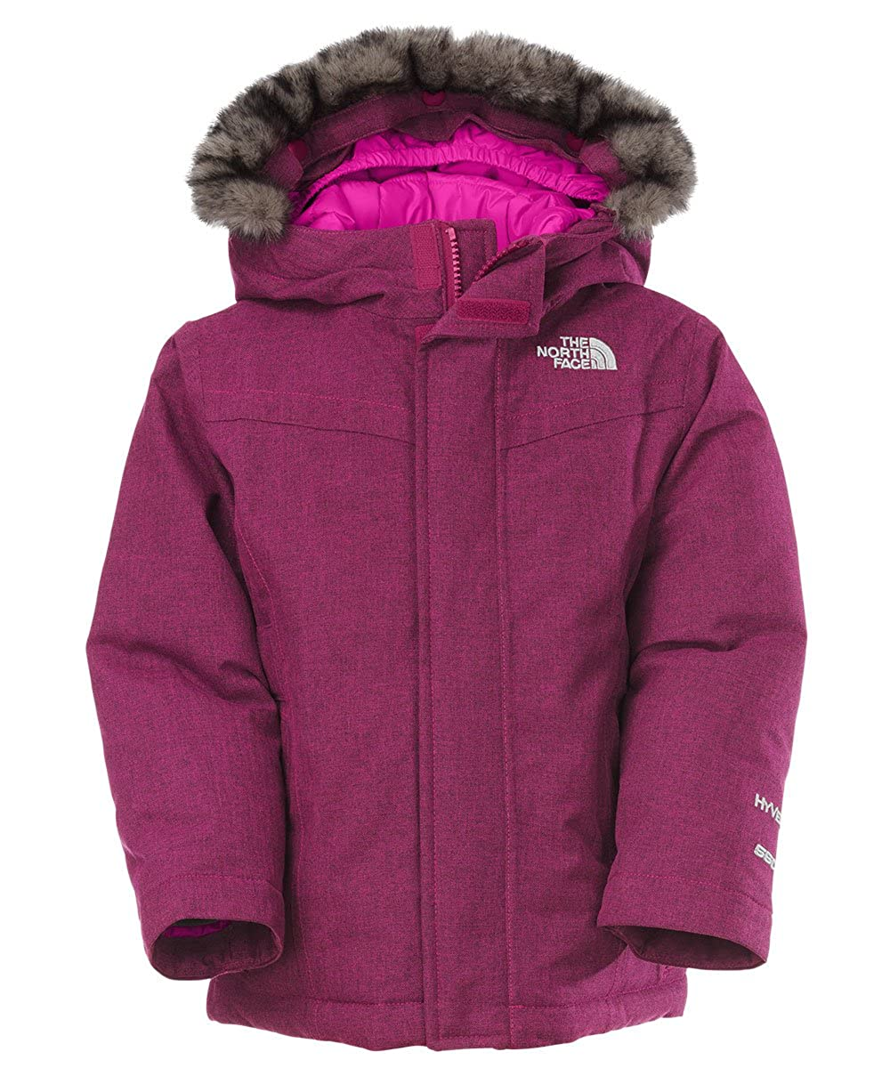 Amazon.com: The North Face Little Girls' Toddler Greenland Down ...