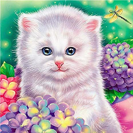 Monbedos 5D - Kit completo de pintura con diamantes para gatos ...