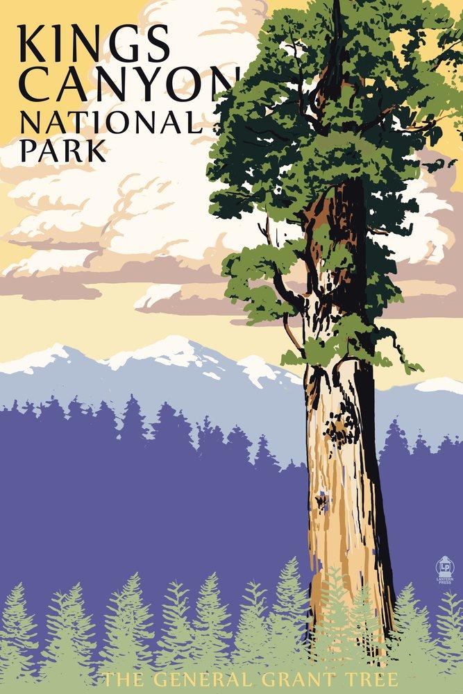 超爆安 General Art Grantツリー – 9 Kings Print Canyon国立公園、カリフォルニア 36 x 54 Giclee Print LANT-47655-36x54 B00N5CR0Y4 9 x 12 Art Print 9 x 12 Art Print, 福井の地酒とワイン まるこ:4d2db29d --- cursos.paulsotomayor.net