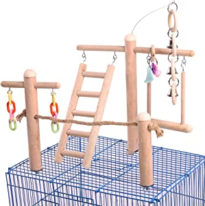 QBLEEV Bird Cage Stand Play Gym, Green Cheek Conure Perch Playground, Wood Parrot Climbing Ladder Chewing Chain Swing for Lovebirds Budgies Finches Parakeets, Small Animals Activity Center