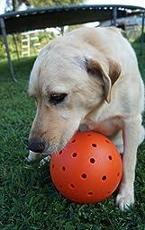 "Pet Supplies : Pet Toy Balls : Unbreakoball 10"" Big Daddy"