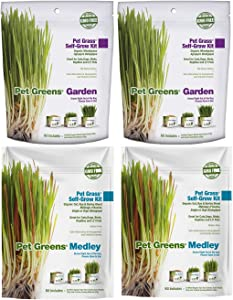 Pat Greens 4 Pack Pet Grass Garden Wheatgrass self Grow and Medley Oat, Rye and Barelly, 2 of Each 3oz Package