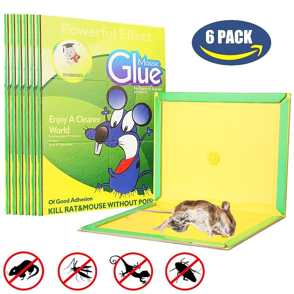 Wisdomlife Best MiceRat Glue Trap, [Super Sticky & Irresistible Peanut Butter Scented Glue Board] Perfect Use for Indoor and Outdoor - 6 Packs