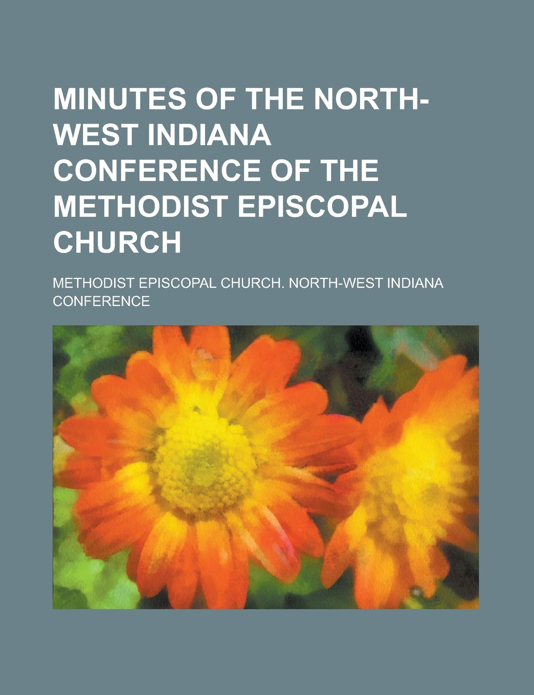 Read Online Minutes of the North-West Indiana Conference of the Methodist Episcopal Church ebook