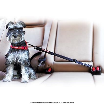 Amazon.com : EzyDog CLICK - Best Dog Seat Belt Car Harness ...