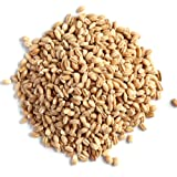 R R Agro Foods Hulled Barley Seeds 500 Gms