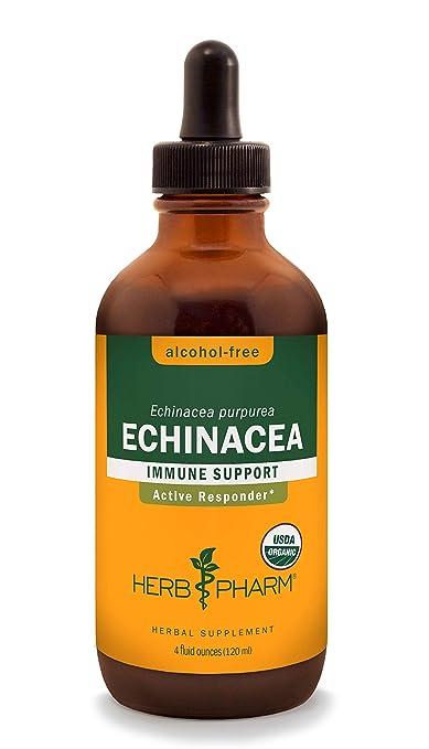 Herb Pharm Certified Organic Alcohol-Free Echinacea Liquid Glycerite
