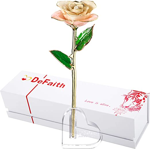 DEFAITH 24K Gold Trimmed Long Stem Real Rose with Ivory Gold Rose with Stand