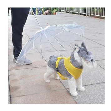 Paraguas para mascotas artesanal 9 para perros pequeños, paraguas con correa para perro, mantiene