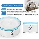 Lunvon 100 OZ Pet Fountain Dog Water