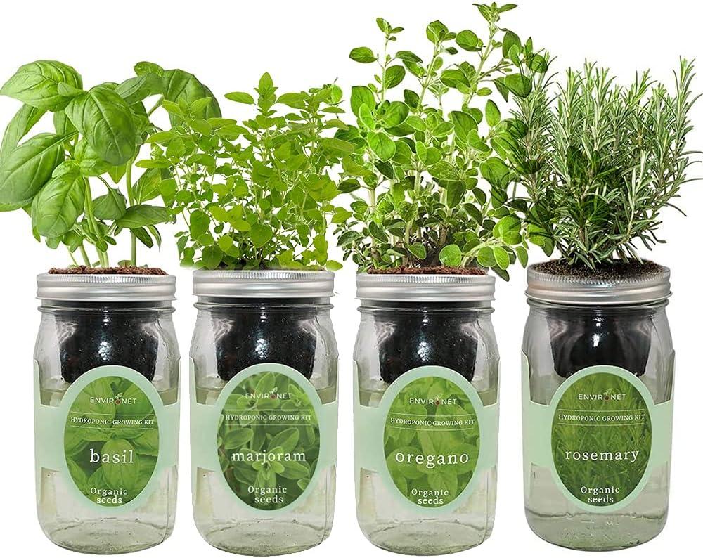 Environet Hydroponic Mason Jar Indoor Garden Seed Starter Kits - Italian Herb Blend Growing Kits, Gardening Gift(Basil, Marjoram, Oregano, Rosemary)