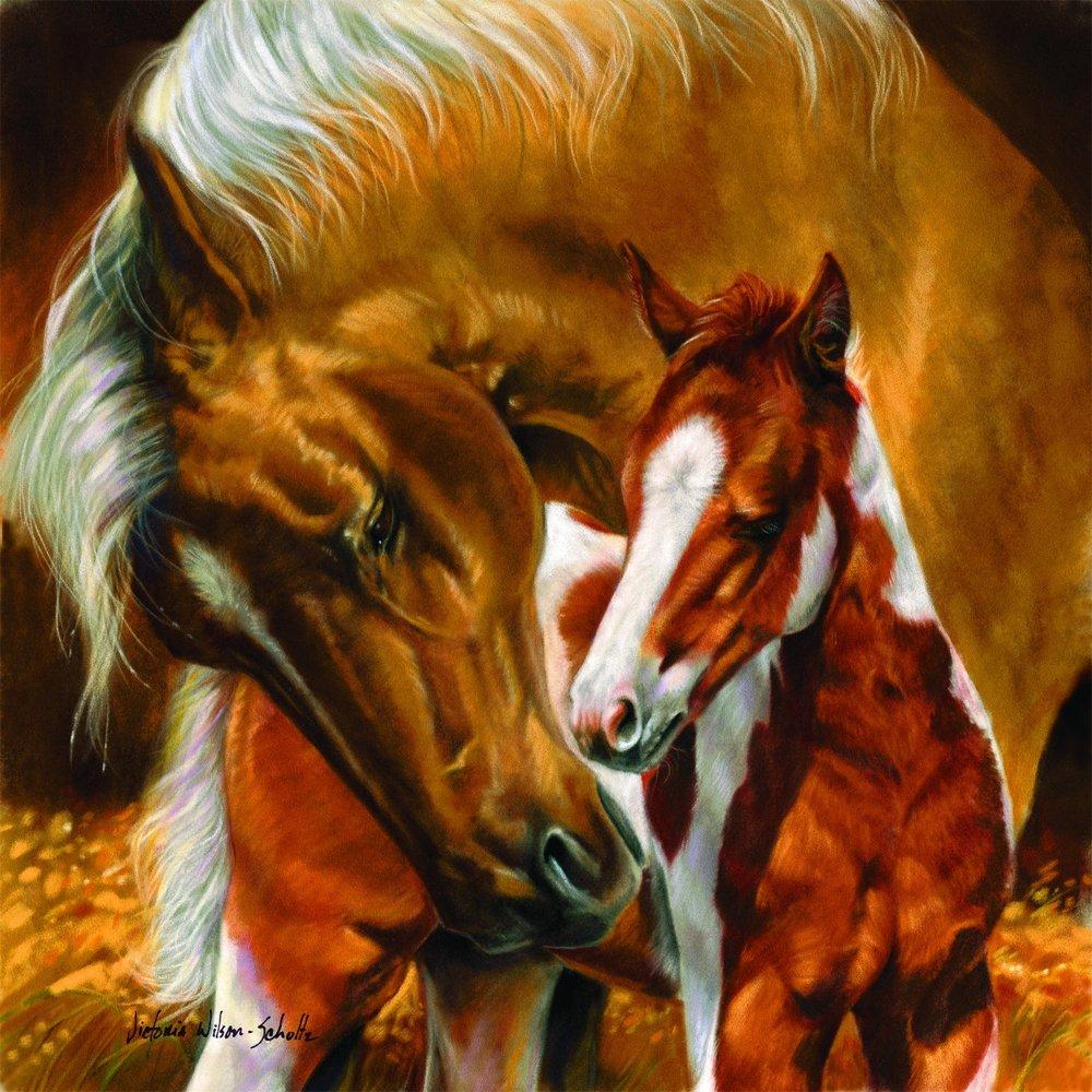 SunsOut 54979 - Pferdemutter und Kind - Puzzle 500 Teile