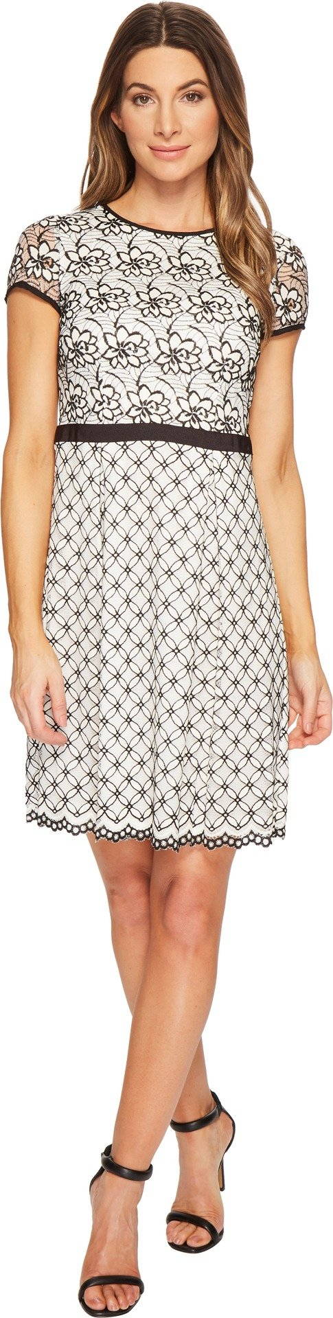 Adrianna Papell Women's Twin Lace Fit and Flare Dress Ivory/Black 10 by Adrianna Papell (Image #1)