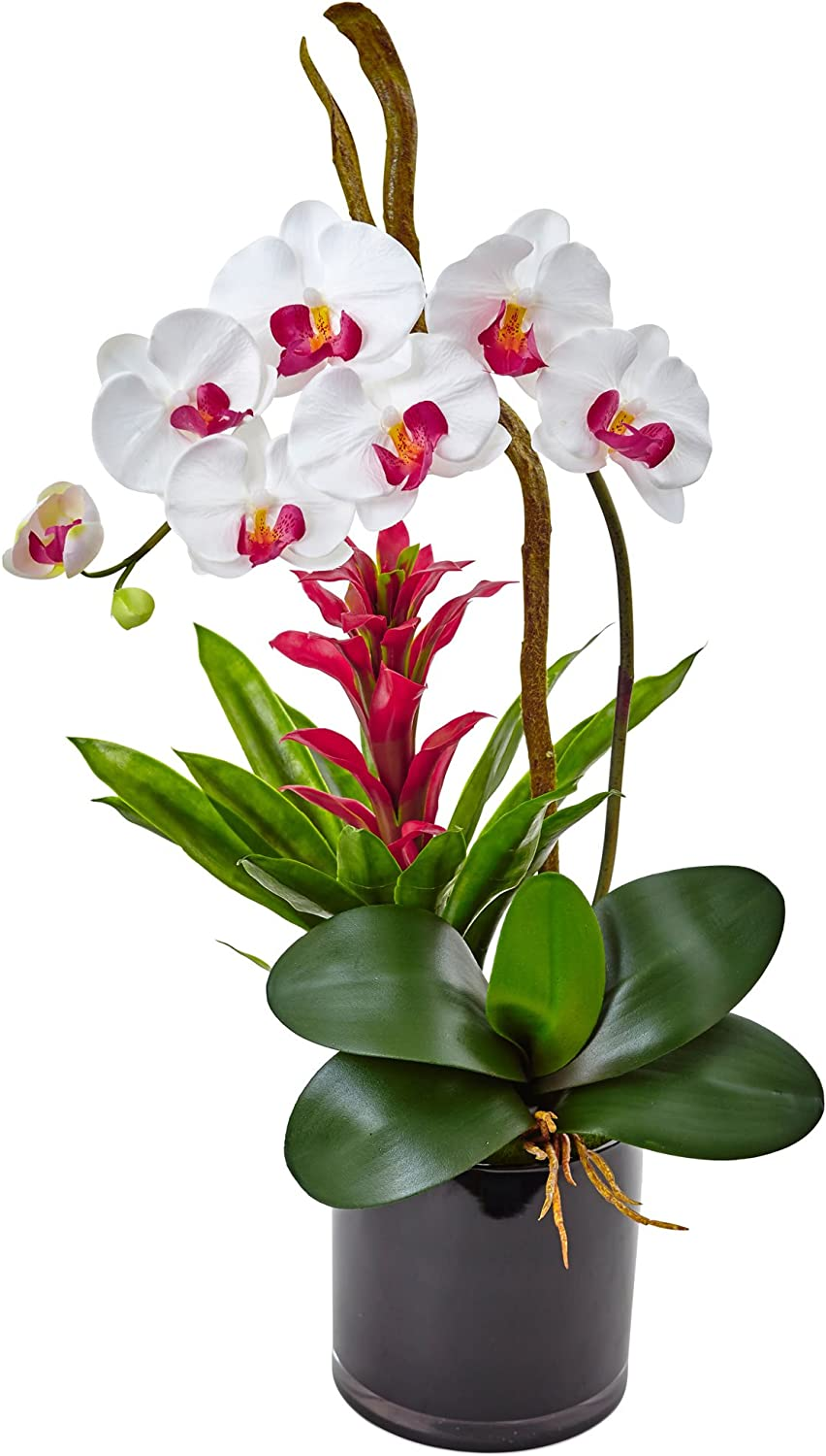 Amazon Com Nearly Natural 1 Orchid And Bromeliad Silk Arrangement White Home Kitchen