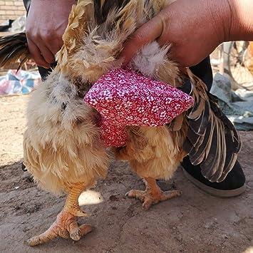 Windeln für hühner