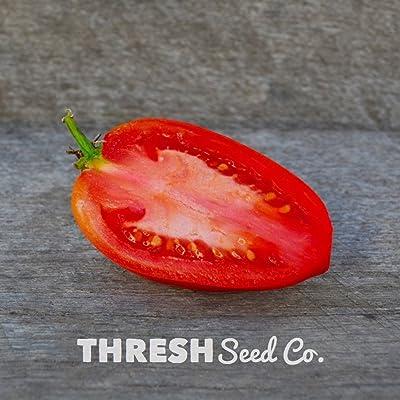 Amish Paste Heirloom Tomato - 50 Seeds : Garden & Outdoor
