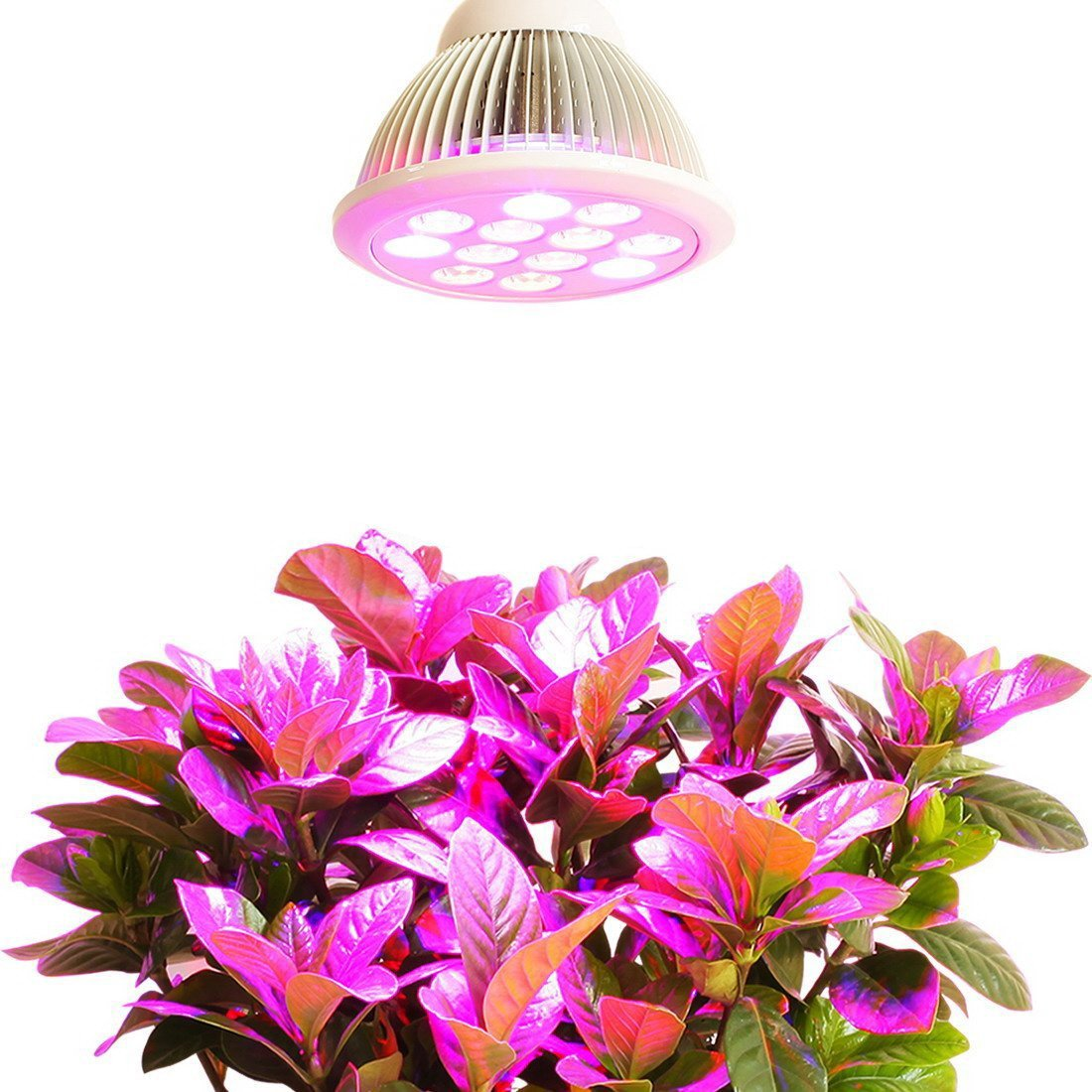 Plant Light, InaRock Newest 12W Plant LED Grow Light E27 Growing Bulbs for Garden Greenhouse and Hydroponic Aquatic Plants Light Full Spectrum Growing Lamps in 3 Bands