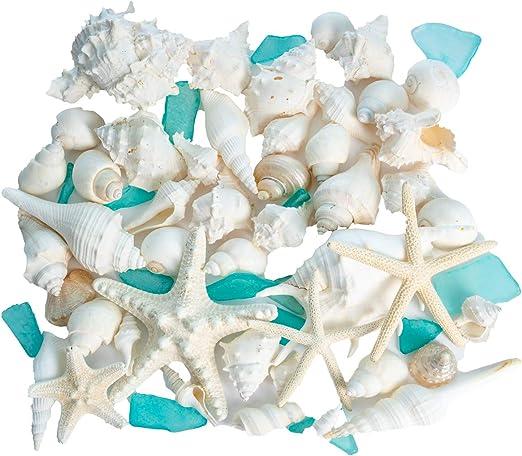 Amazon Com Nautical Crush Trading Sea Shells Real Mixed Beach Seashells With Real Starfish Caribbean Blue Sea Glass White Decorative Seashell Decor Blue Seaglass Pieces Seashell Wedding 1