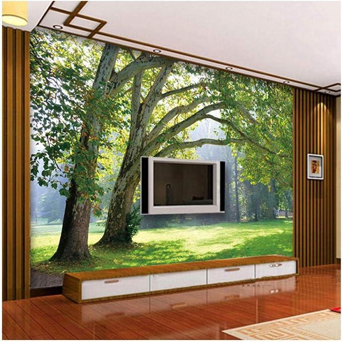 Xbwy Murales De Pared 3D Papel Pintado Paisaje Para Sala De Estar Paisaje De Bosque Papel De Pared Murales Naturales Sala De Estudio Telón De Fondo De Tv Cubiertas De Pared-200X140Cm: Amazon.es: