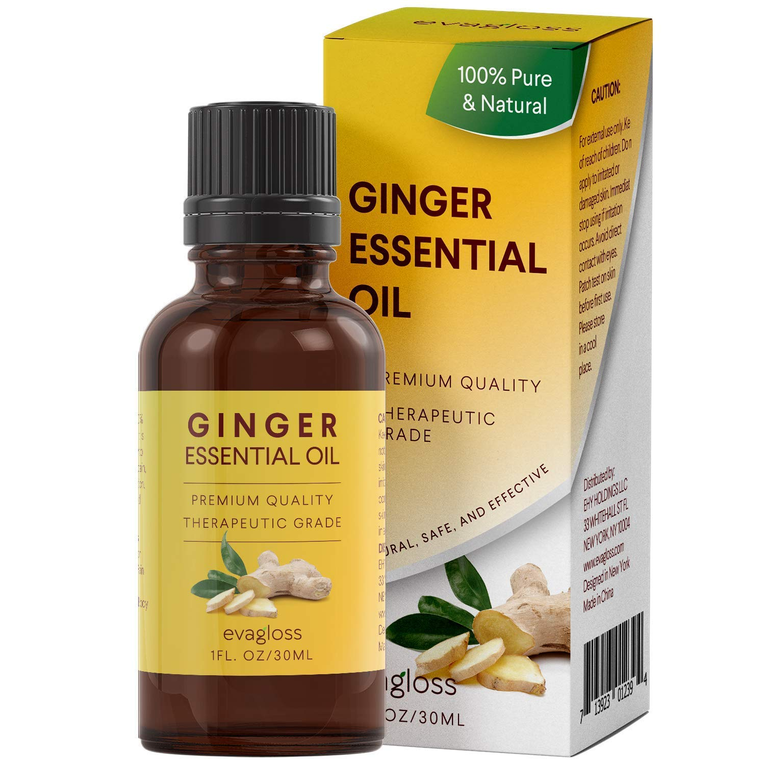 Evagloss Ginger Essential Oil (100% Pure and Natural - Undiluted) Steam Distilled, Natural & Safe Lymphatic Drainage, Reduces Inflammation & Nausea, Premium Quality Essential Oil [30ml]