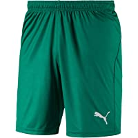 Puma Liga Shorts Core - Pants Hombre