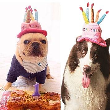 Amazoncom Easyinsmile Cute Adorable Dog Cat Birthday Cake Hat Pet