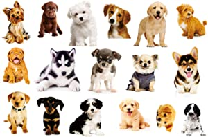 3D Dog Wall Sticker 17PCS Pet Stickers for Kids Wall Decals Living Room Baby Rooms Bedroom Toilet House Wall DIY Decoration