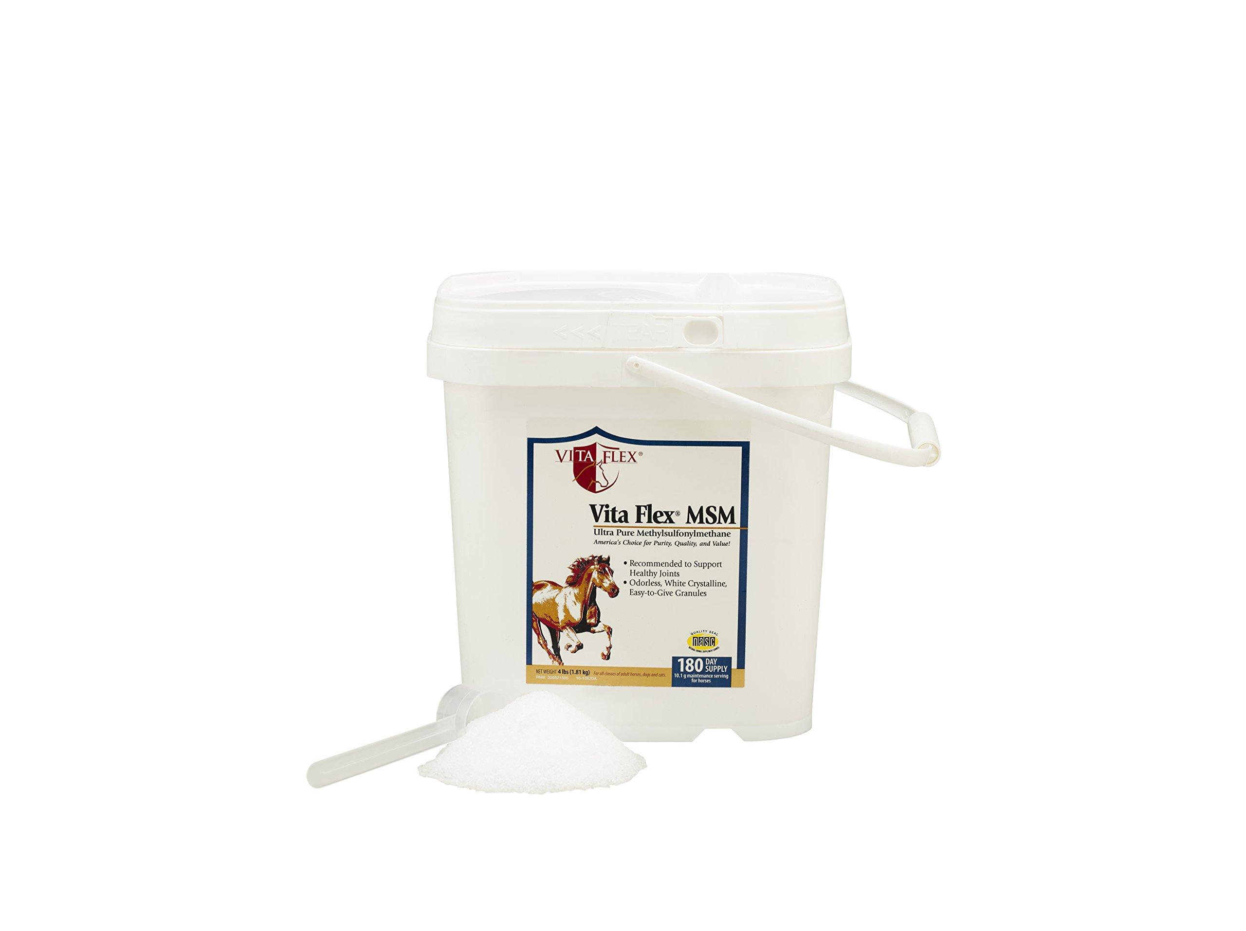 Vita Flex MSM Ultra Pure, Horse Joint Supplement by Vita Flex (Image #3)