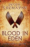 Blood in Eden (Sister Fidelma Mysteries Book 30): An unputdownable mystery of bloodshed and betrayal