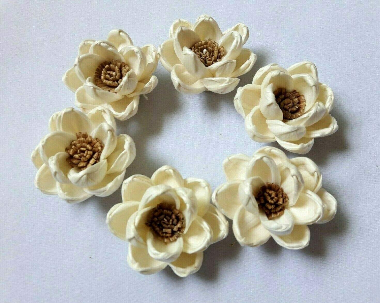 Jikkolumlukka 50 pcs. Lotus Flowers Sola Balsa Wood Diffuser Craft Decor Home Fragrance Bouquet Wedding DIY Gift 5Cm by Jikkolumlukka