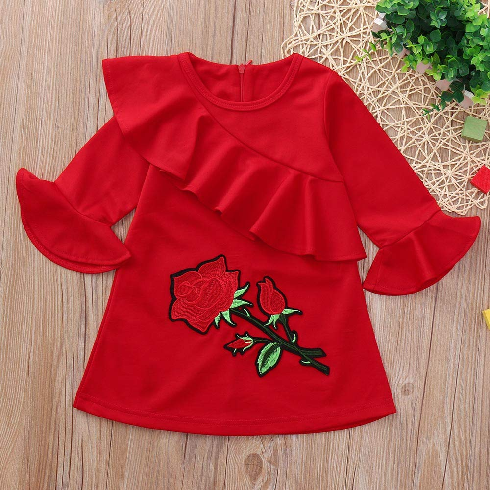 KONFA Toddler Baby Girl Autumn Embroider Flower Dress 0-4 Years,Little Princess Long Sleeve Skirt Winter Clothes