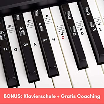 Piano + Keyboard Notas de piano + Gratis eBook | Premium para 49 ...