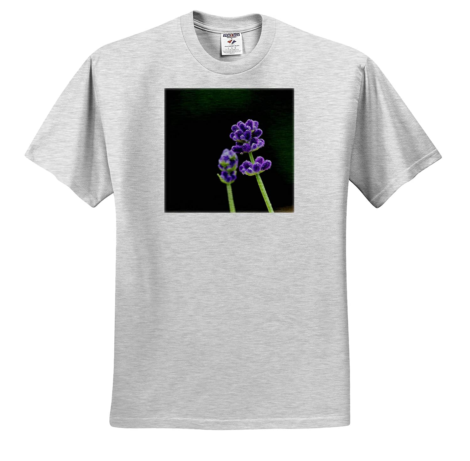 Macro Photograph of Lavender Flowers in Bloom 3dRose Stamp City Flowers ts/_316754 - Adult T-Shirt XL
