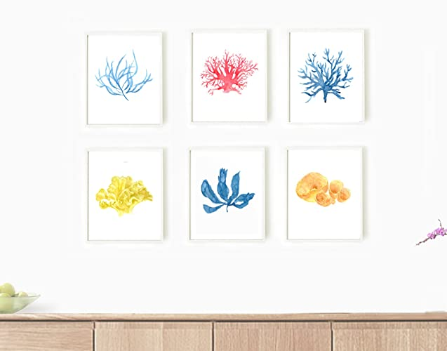 Amazon.com: Sea Coral Wall Art, Set of 6 Wall Art, Sea Weed Print ...