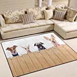 """ALAZA Hungry Chihuahua Pug Puppy Dog Area Rug Rugs for Living Room Bedroom 5'3""""x4'"""