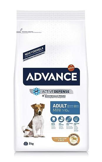 Advance Pienso para Perros Mini Adult - 3000 gr: Amazon.es ...