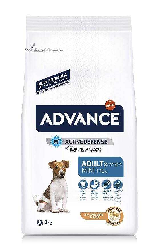 Advance Affinity Pienso para perros mini adultos mini pollo y arroz: Amazon.es: Productos para mascotas
