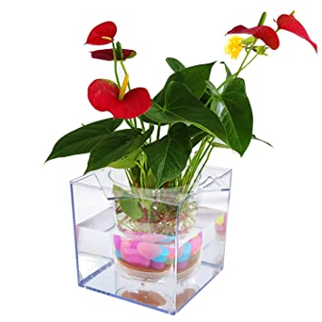 office flower pots. petbob flower pot decorative plant selfwatering mini potfish office pots h