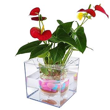 office flower pots. petbob flower pot decorative plant selfwatering mini potfish office pots h