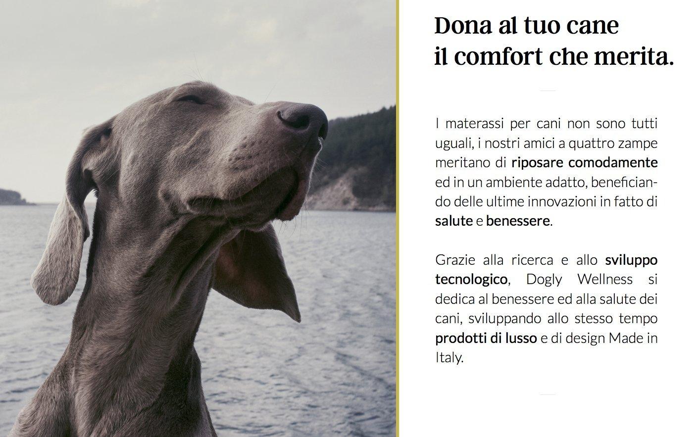 Dogly Wellness para Perros Caseta cojín Cama Alfombrilla colchón Memory ortopédico Lusso Italiano Benessere BREVETTI Celliant resistat- Large: Amazon.es: ...