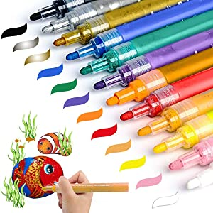 Acrylic Paint Marker Pens, Akarued Paint Pens for Rock Painting, Ceramic, Stone, Wood, Glass, Fabric, Photo Album, Canvas, Plastic, DIY Craft Project Supplies, Set of 12 Medium Tip
