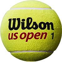 Wilson(ウイルソン) サイン用 テニス ジャンボボール US OPEN JUMBO BALL (USオープン ジャンボボール)