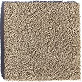 Tranquility Mountain Mist 24 in. x 24 in. Residential Carpet Tile (10 Tiles / Case)