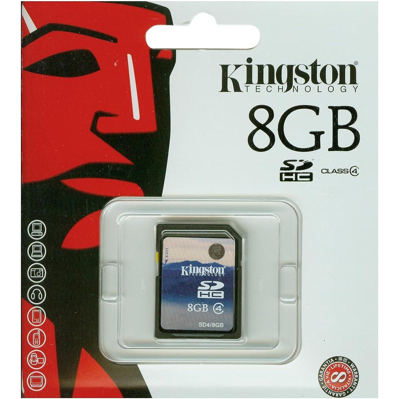 Speicherkarten, z.B. für ein paar Songs oder einen Film, können Sie u.a. von Kingston schon für unter fünf Euro erwerben.