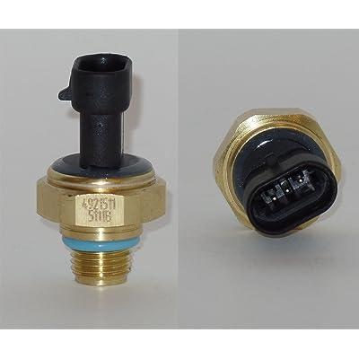 4921511 Oil Pressure Sender/Switch Cummins Eng Dodge Ram 2500 3500 1998-1999-2000-2001 5.9L: Automotive