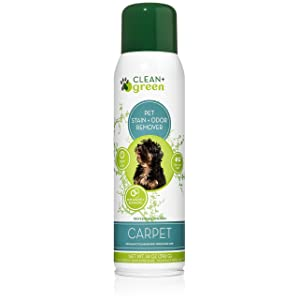 Clean+Green Professional Strength Carpet
